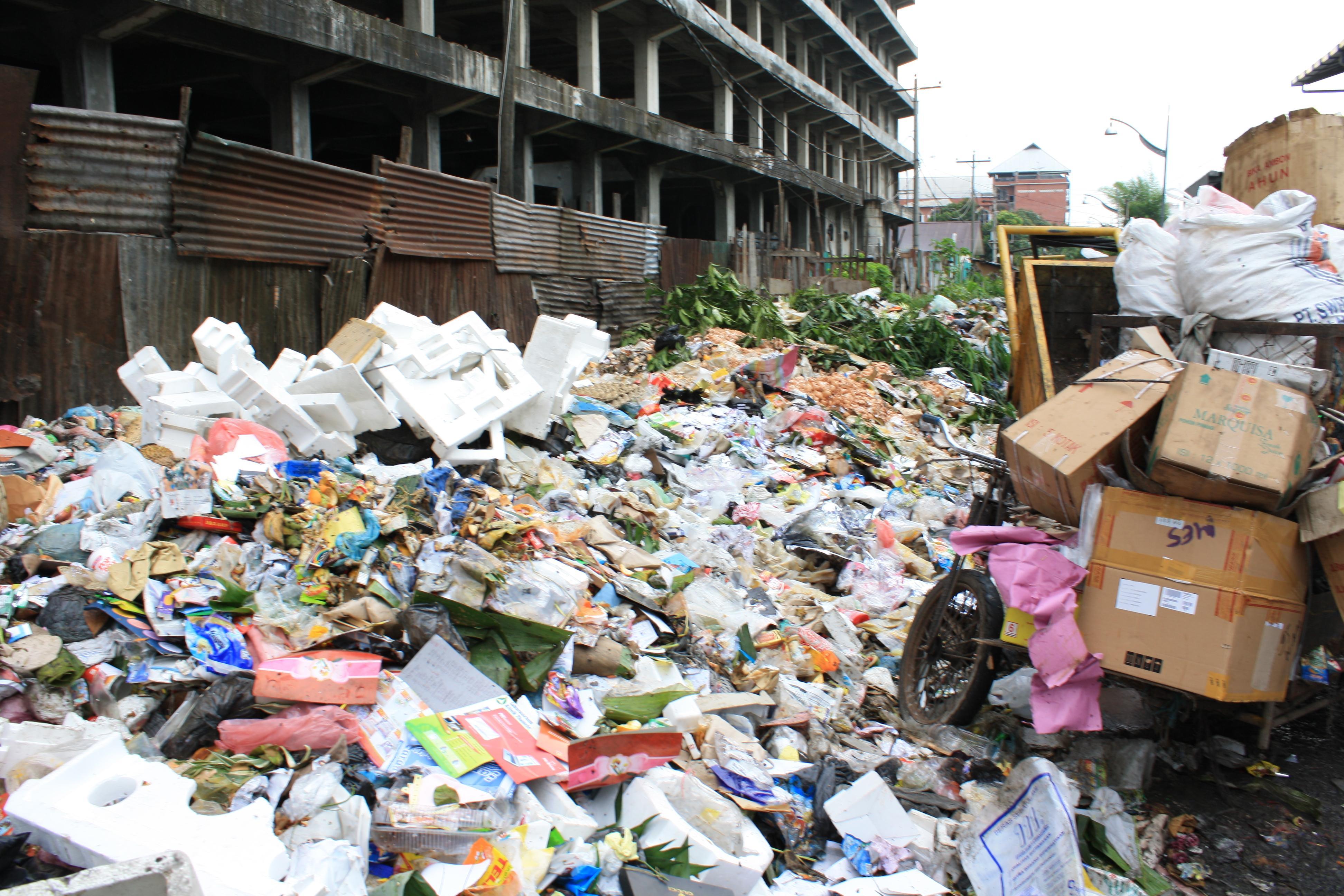 Cara Mengolah Sampah Organik Di Rumah