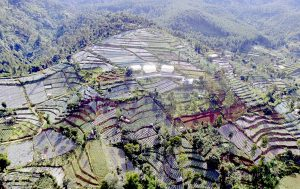 Luas Lahan Pertanian Kian Menurun Jurnal Asia