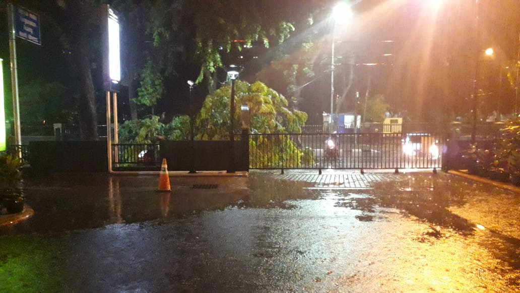 Hujan Disertai Angin Kencang Melanda Kota Medan, Hati-hati Pohon Tumbang