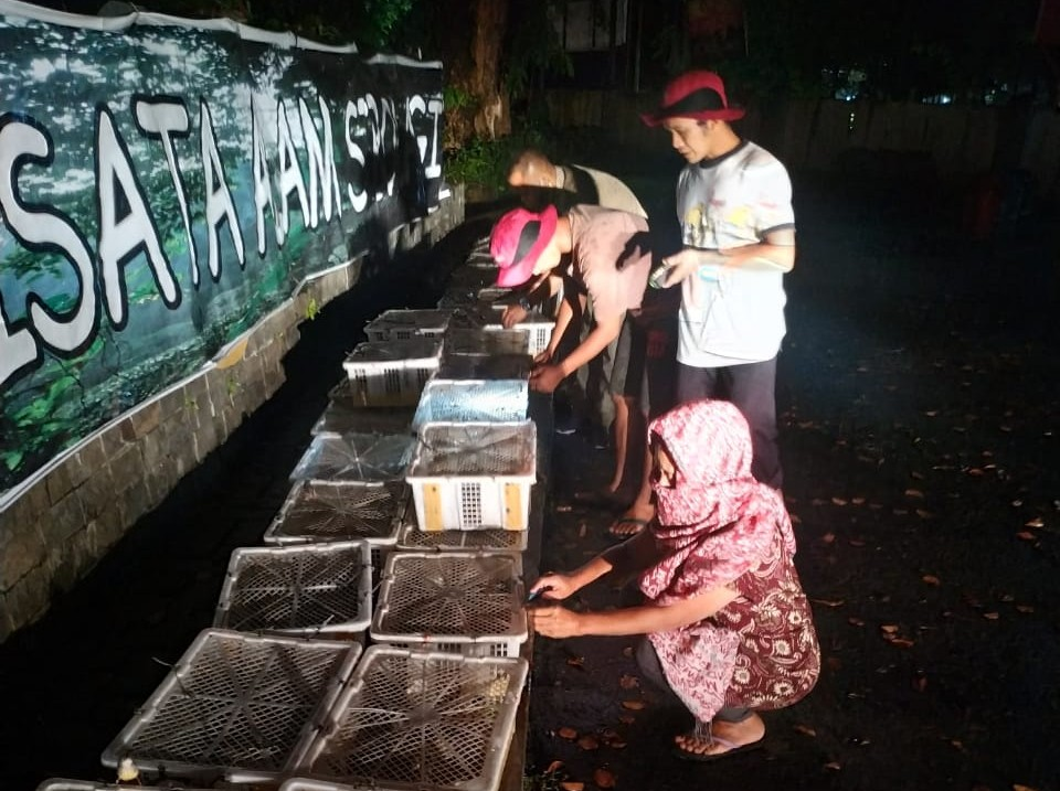 Gagal Diperdagangkan ke Yogyakarta, Seribuan Burung Prenjak Dilepasliarkan di Sibolangit
