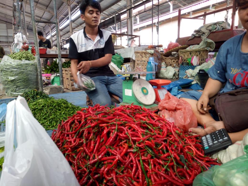 Meski Terjadi Erupsi, Harga Cabai di Medan Turun, Ini Alasannya!